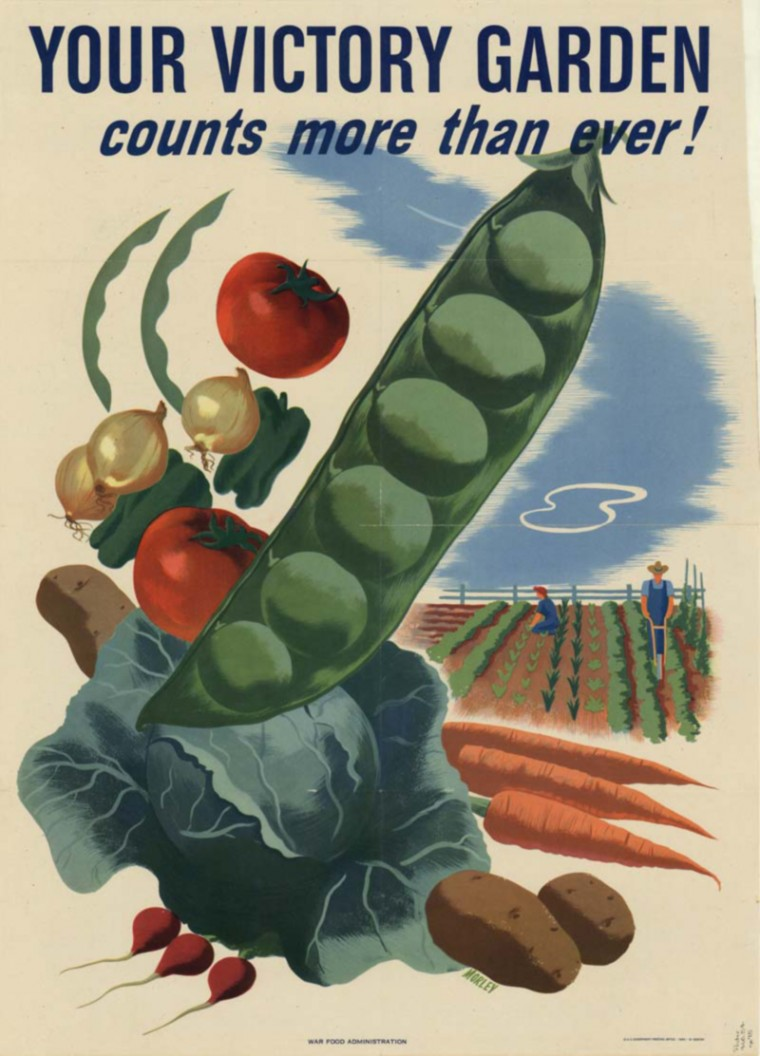 "by Artist: MorleySize: 27""x19""Publication: [Washington, D.C.] Agriculture Department. War Food Administration.Printer: U.S. Government Printing Office"