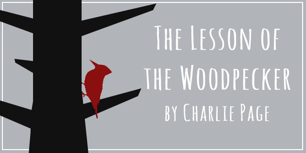 The Lesson of the Woodpecker by Charlie Page