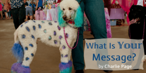 What Is Your Message by Charlie Page